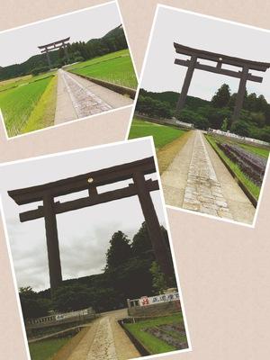 写真 torii.JPG